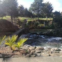 Hamurana Springs Recreation Reserve User Photo