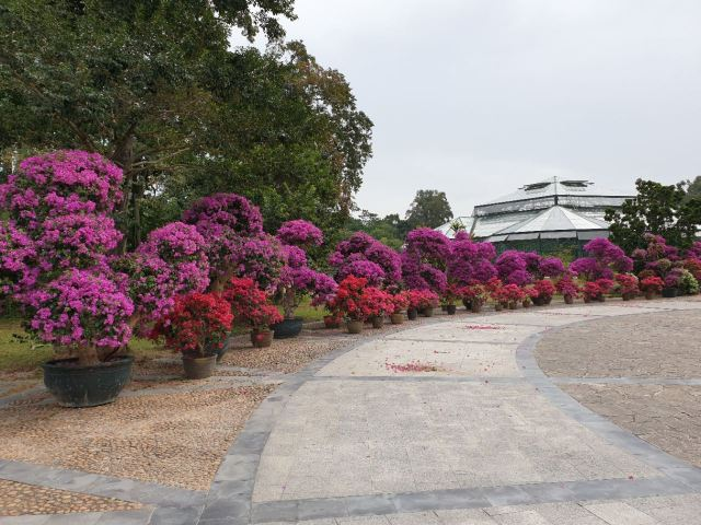 Chinese Academy of Sciences Huanan Botanical Garden