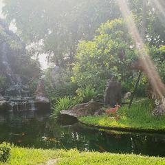 티엔무 사원 여행 사진