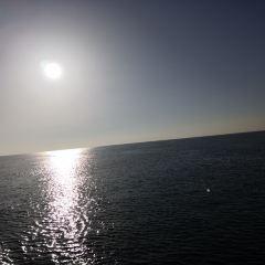 Maui Whale Watching 여행 사진
