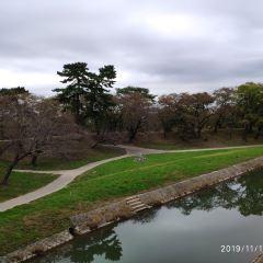 岡崎城用戶圖片