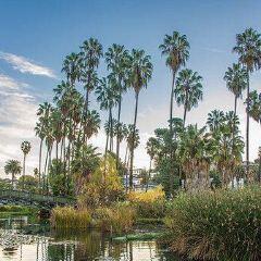 Johnny Carson Park User Photo