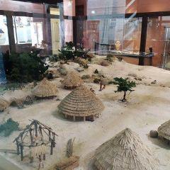 Musee de la prehistoire amerindienne Edgar-Clerc User Photo