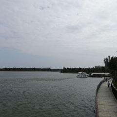 Dongyu Island User Photo