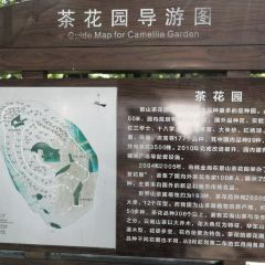 Wenzhou Jingshan Forest Park User Photo