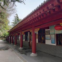 Guanzhong Fengqing Park User Photo