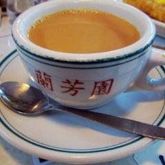 Lan Fong Yuen(Tsim Sha Tsui) User Photo