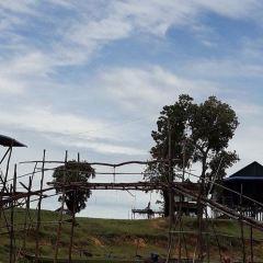 空邦魯沼澤森林用戶圖片