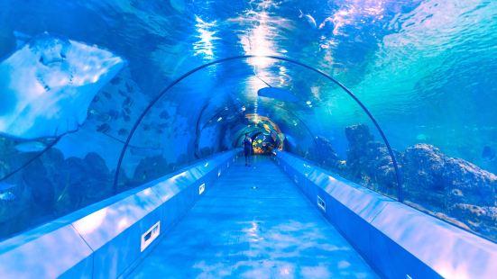幻太奇海洋館