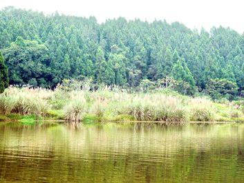 五鳳山森林公園
