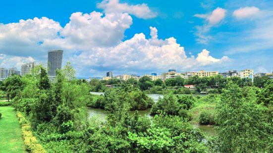 三亞紅樹林公園