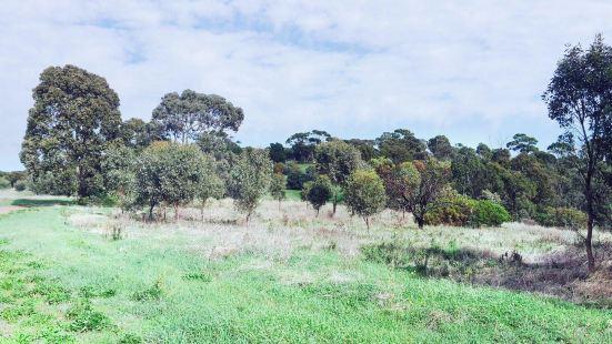 O'Halloran Hill Conservation Park
