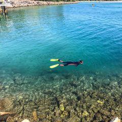 Sunshine Coast User Photo