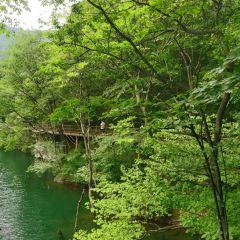 商城西河(金剛台)生態旅遊區用戶圖片