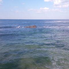 Newcastle Beach User Photo