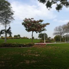 Zabeel Park User Photo