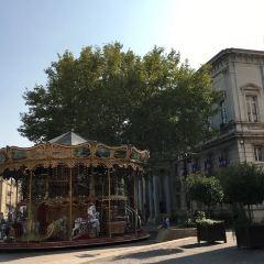阿維尼翁市政廳用戶圖片
