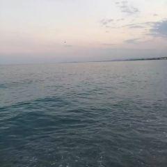 蔚藍海岸天文台用戶圖片