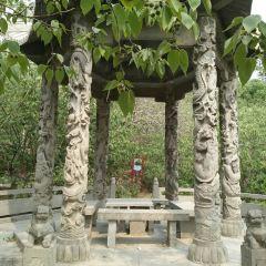 Cao Zhi Tomb User Photo