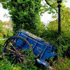 Hestercombe Gardens User Photo