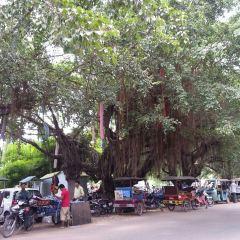 高棉觸摸美食用戶圖片