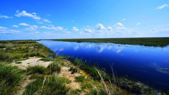 烏蘭諾爾濕地