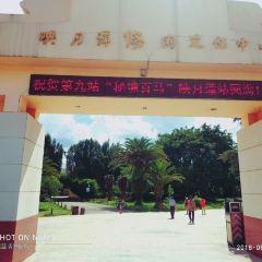 Yingyue Lake Cultural Centre User Photo