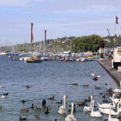 Geneva Lake User Photo