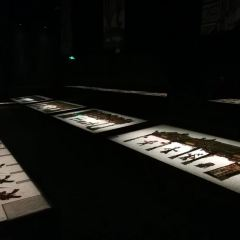 Xi'anshi Mingqing Piying Art Museum User Photo