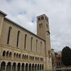 Perth Museum用戶圖片