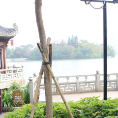 Yuanyangting User Photo