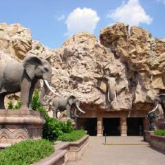普利托裡亞動物園用戶圖片