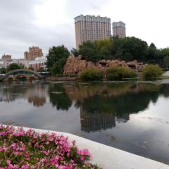 이민허 공원 여행 사진