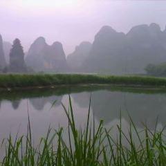 Yingde National Forest Park User Photo