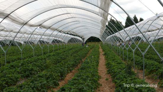 Briarlands Farm