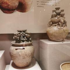 金華市博物館用戶圖片