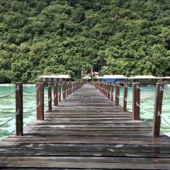 Tamparuli Suspension Bridge User Photo