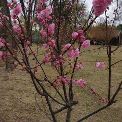 Qinyan Scenic Area User Photo