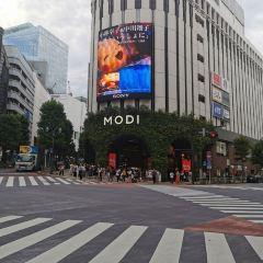 渋谷のユーザー投稿写真