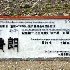 魯郎石鍋城用戶圖片