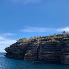 Jervis Bay Whale Watching Cruise User Photo