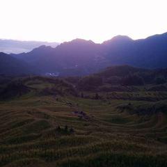 Yunhe Rice Terraces User Photo