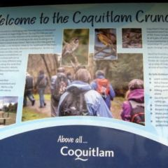 Coquitlam Crunch Trail User Photo