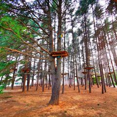 Quanshan Forest Park User Photo