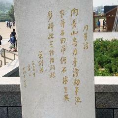 월야만공원 여행 사진
