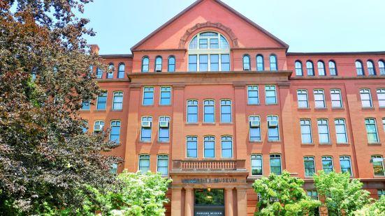 哈佛自然歷史博物館
