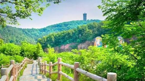浮搓山森林公園