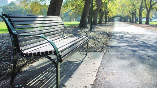 Fawkner Park