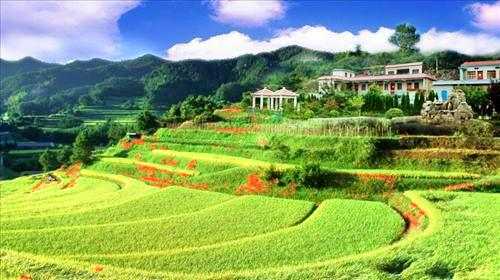 The Yangshugou (Poplar Cove) Scenic Area