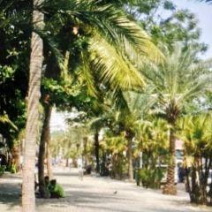 Beach Road User Photo